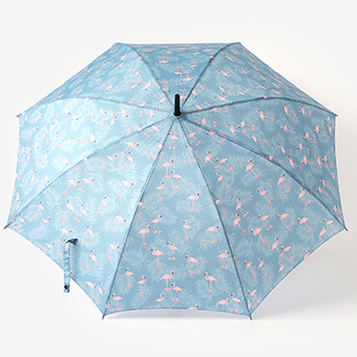 Зонт-трость 'Long Umbrella'